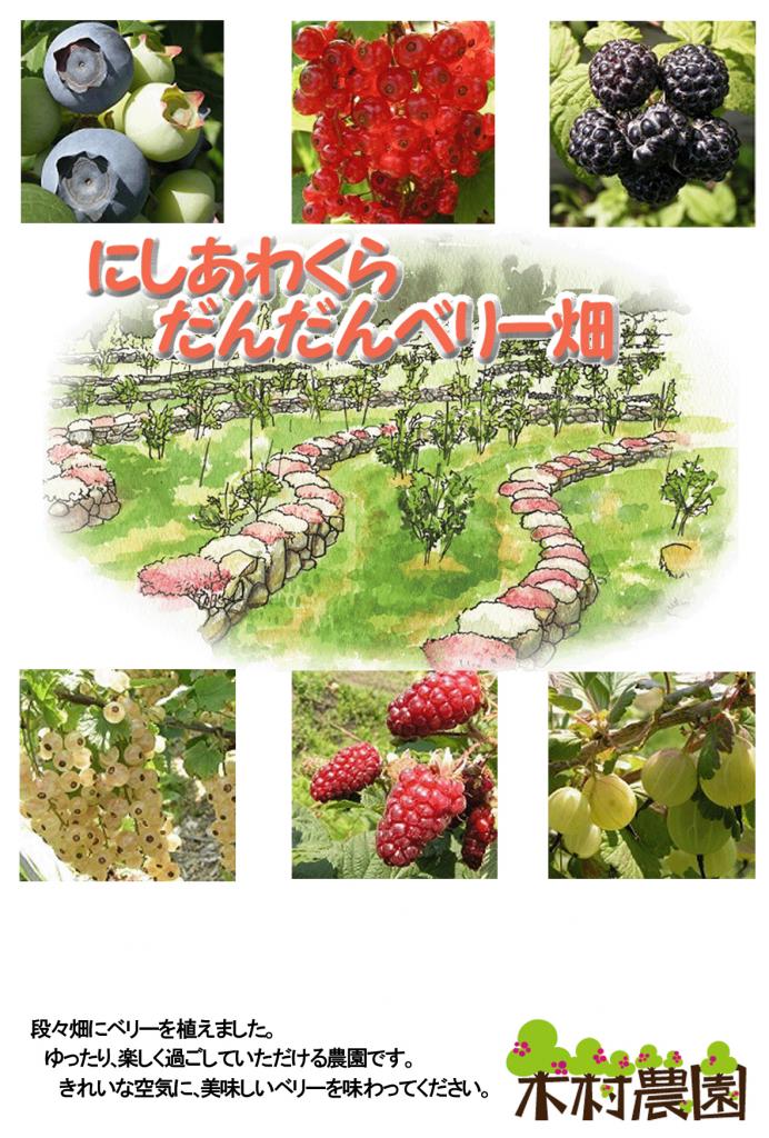 dandanberry